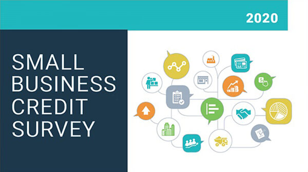 Graphic for Federal Small Business Credit Survey 2020