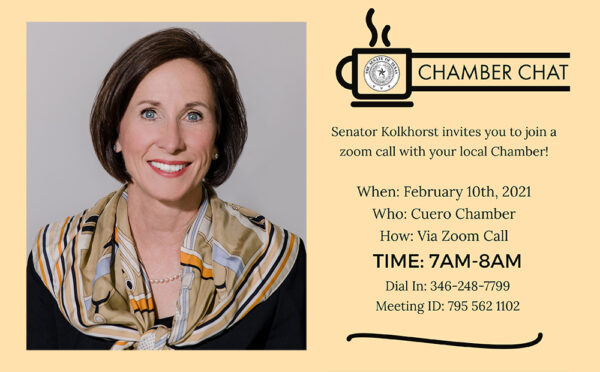 Graphic for Chamber Chat with Texas Senator Lois Kolkhorst